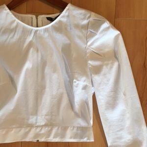 Zara basic white cotton crop top